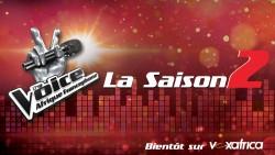 The Voice season 2 logo.jpg